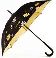 paint a black umbrella with daisies
