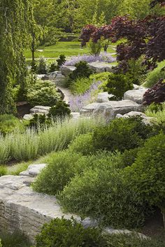 Slope landscaping design.