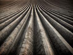 Field Photography – Fubiz™ | Joerg Marx