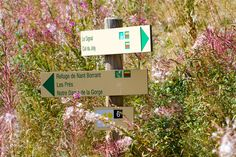 Signs | by Chris Hawkes