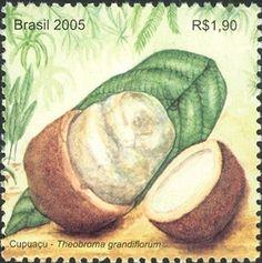 Selos: Cupuaco - The exotic flavour of the Brazilian Amazonia (Brasil) (Flora) Mi:BR 3401,Sn:BR 2953b,WAD:BR004.05,RHM:BR C-2606