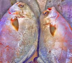 How to Freeze Seafood and How to Freeze Fish - including whole fish, fillets and fish steaks.