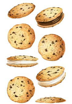 Serie of watercolor illustrations for packaging and advertising of the coconut-based cookies. Cookie Drawing, Food Drawing, Food N, Food And Drink, Desserts Drawing, Dessert Illustration, Food Illustrations, Cute Food, Stickers