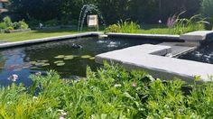 Poussin's garden