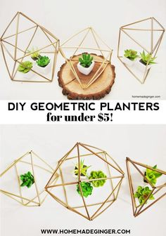 You can make your own DIY geometric planters for under $5 with this simple trick. All you need are some straws, spray paint and wire. If you need a quick and inexpensive centerpiece idea, try these geometric planters!