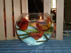 Callas with Floating Candle