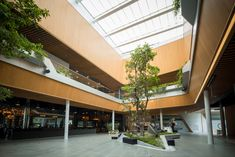 Gallery of The Groove / Synthesis Design + Architecture - 2