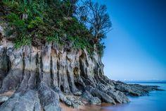Totaranui Bay, Abel Tasman National Park, New Zealand - Imgur