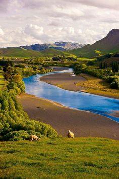 New Zealand <3 Enchanted Nature