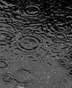 Are raindrops tear-shaped? | The Why Files