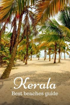 Top beaches to visit in Kerala, what they are famous for and where they are. Kerala beaches suitable for swimming, sunbathing, parties, calm retreat. reiseziele Best beaches in Kerala and which should you choose Goa Travel, Kerala Travel, India Travel Guide, Travel Destinations Beach, Nightlife Travel, Places To Travel, Travel Tips, Vacation Travel, Africa Destinations