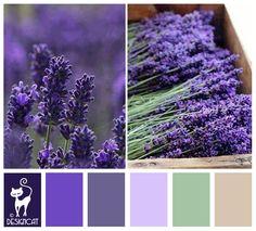 Lavender Fields - purple, lavender, slate, blue, grey, green, mint, beige - Designcat Colour Inspiration Pallet