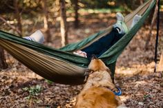 Ready to go For Hammock Camping With Dogs? Read our complete guideline which will tell you everything about how to hammock camp with dog. Camping Photography, Beach Photography, Hiking Dogs, Camping World, Outdoor Dog, Camping Hacks, Camping Ideas, Camping Essentials, Four Legged
