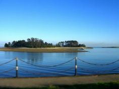 nelson new zealand - Haulashore Island (treasure island)