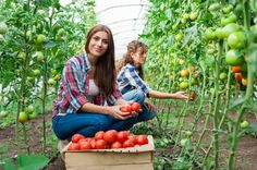 WWOOF host farms: one of the best ways for travelers to truly discover a destination instead of just simply making it a dot on their travel map.