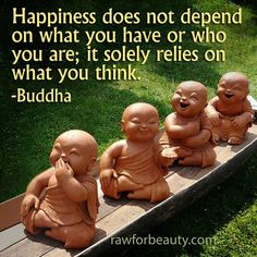 Happiness does not depend on what you have or who you are, it solely relies on what you think- Buddha