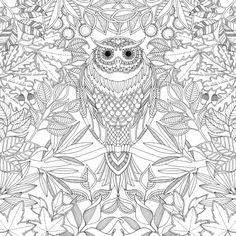 Les 52 Meilleures Images Du Tableau Coloriages Anti Stress Pour
