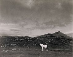 White Horse, South Uist, Scotland (Getty Museum)