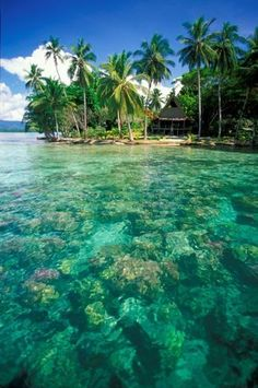 Solomon Islands...Ah, now that is paradise to me. I could swim in that water and float and relax, and just lay in the sun and dream.