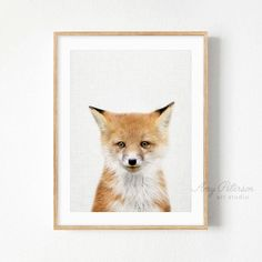 Baby Fox Print, Woodland Animal Nursery Art, Baby Animal Wall Art, Nursery Decor by Amy Peterson – Amy Peterson Art Studio™ - Baby Animals