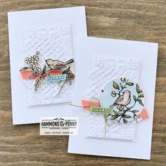 When you need a simpler version of a fussy cut card for a stamp class, the Stitched Shapes dies to the rescue! #hammondandpennycards…