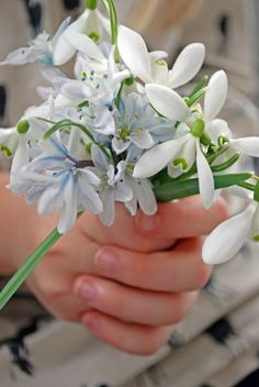 ♕ beautiful spring bouquet