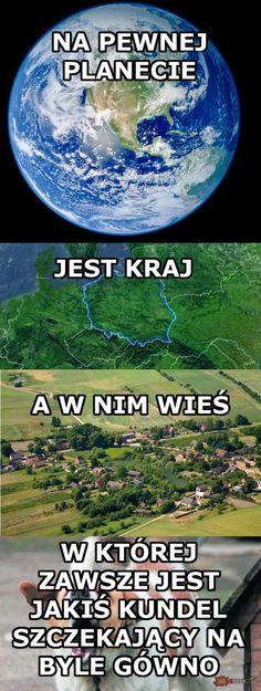 Życie pisze najlepsze memy Wtf Funny, Hilarious, Polish Memes, Past Tens, Funny Mems, Komodo Dragon, Dramione, Best Memes, Animals And Pets
