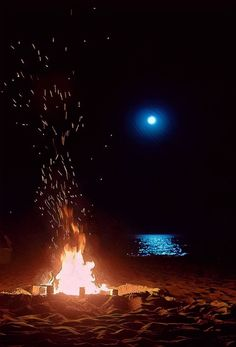 image of a bonfire on the beach at night and the moon's reflection in the water.in camping