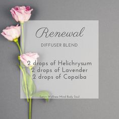 Helichrysum is renowned for its nourishing and renewing properties. It blends beautifully with the soothing aroma of lavender and earthy scent of Copaiba. Essential Oils 101, Essential Oil Diffuser Blends, Wintergreen Oil, Roller Bottle Recipes, Aromatherapy Diffuser, Copaiba, Rose Oil, Doterra Oils, Mind Body Soul