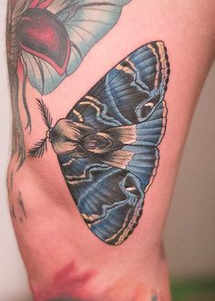 Realistic moth by Kristin Schubert at Holy Diver Tattoo; Essen, Germany.