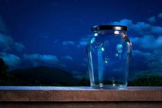 The Great Smoky Mountains' Incredible Firefly Light Show Fireflies In A Jar, Fun Summer Activities, Great Smoky Mountains, Summer Fun, Mason Jars, The Incredibles, Bottle, Night Jar, Image