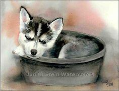 KLEE KAI SIBERIAN Husky Puppy Dog 15x11 Giclee Print by k9stein, $40.00