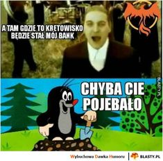 A tu gdzie to kretowisko będzie stał mój bank Very Funny Memes, Wtf Funny, Funny Photos, Funny Images, Polish Memes, Funny Mems, Text Memes, Dark Memes, My Hero Academia Manga