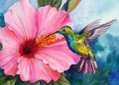 Zeh Original Art Blog Watercolor and Oil Paintings: Pink Hibiscus and Green-breasted Mango Hummingbird