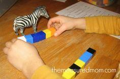 animal math for preschoolers - 3 - the measured mom