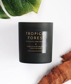 "BOUGIE PARFUMÉE ""TROPICAL FOREST"" - CIRE DE NOIX DE COCO & HUILES… Tropical Garden, Essential Oils, Island, Natural, Taper Candles, Oil, Block Island, Tropical Gardens, Islands"
