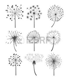 Abstract graphic dandelion collection in linear style, vector. - Abstract graphic dandelion collection in linear style vector illustration set Stock Vector - Doodle Drawings, Doodle Art, Easy Drawings, Dandelion Drawing, Halloween Drawings, Bullet Journal Art, Simple Doodles, Flower Doodles, Zentangle