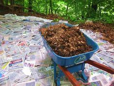 Garden Flowers - Annuals Or Perennials Newspaper Mulching. Set out The Newspaper, Wet, Add Top Mulch, Then Plant What You Want, Without Weeds.