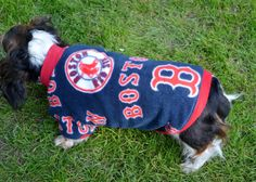 Dachsund Pro-Sports Pull On Sweater See Etsy.com for measurements for Fudgie!   Ittybittydogs, llc