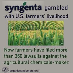 Farmers in 20 states have filed more than 360 lawsuits against agricultural chemical giant Syngenta. And hundreds more may be coming. Learn why: http://orgcns.org/1CBg4uO