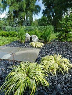 herbe japonaise et gravier en ardoise dans le jardin
