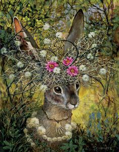 My series called Desert Dada shows animals as dignitaries clothed in the beauty of their native flora and fauna. Animal Art, Fantasy Art, Painting, Whimsical Art, Illustration Art, Rabbit Art, Art, Bunny Art, Beautiful Art