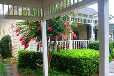 Carlyle House, Side Porch Rain or Shine