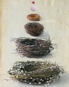 How to make nests  http://www.marthastewart.com/266268/spring-nests-how-to  Great Project for adults and kids for Imbolc, Ostara, Easter and Spring.