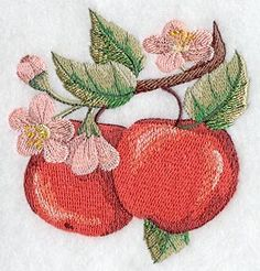 apple fruit accent c3199 embroidery library 3.64 x 3.85 inches