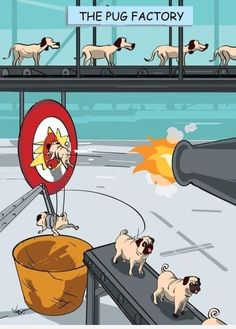 Sorry in advance to pug lovers, but this did hit my funny bone.