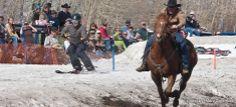 National Finals Ski-Joring Red Lodge, Montana. A fun Montana winter adventure combination of horses and skis.