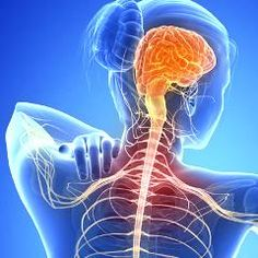 Esclerose Múltipla – O que é, Causas, Sintomas e Tratamentos! Earache Remedies, Natural Dandruff Remedy, Psoriasis Remedies, Health Remedies, Natural Remedies, Best Cold Remedies, Optic Nerve, Neurology, Health Magazine
