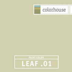 Colorhouse LEAF .01:  Livable and restful green, creates a harmonious backdrop for a room.  khaki, taupe
