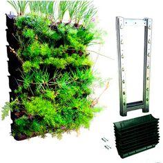 Jardim vertical à venda na Lojinha Natural